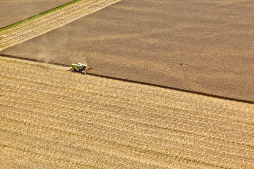Nachhaltigkeit: Landwirtschaft im industriellen Maßstab bringt hohe Erträge, frisst aber Ressourcen und schädigt die Bodengesundheit