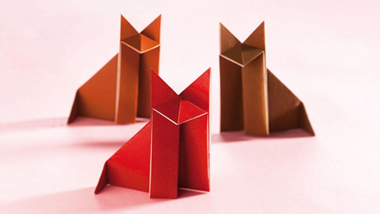 Origami Anleitungen für Kinder   [GEOLINO]