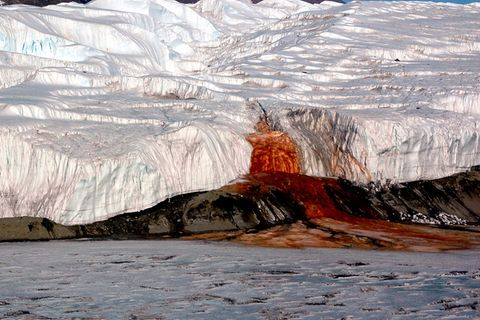 """Antarktis: Warum der Taylor-Gletscher """"blutet"""""""