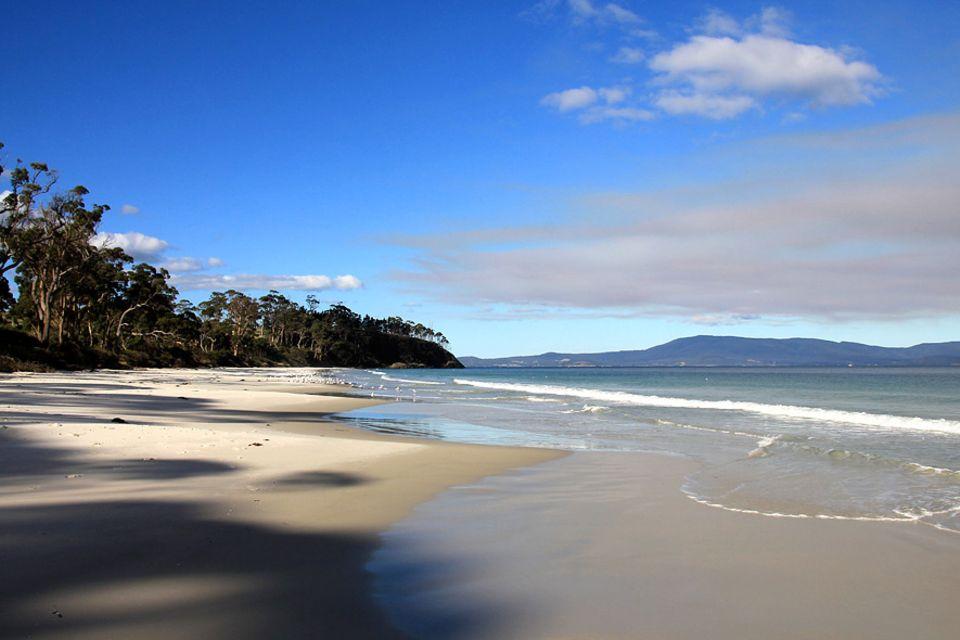 Roadtrip auf Tasmanien: Der Roaring Beach mag karibisch anmuten, doch die Wassertemperaturen sind mit bis zu 12 Grad gewöhnungsbedürftig