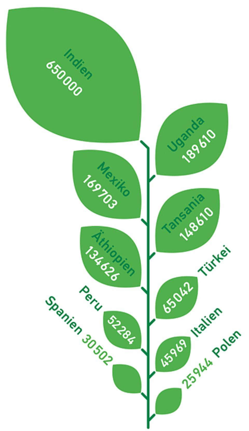 Biolandbau in Zahlen: Anzahl der zertifizierten Bio-Produzenten