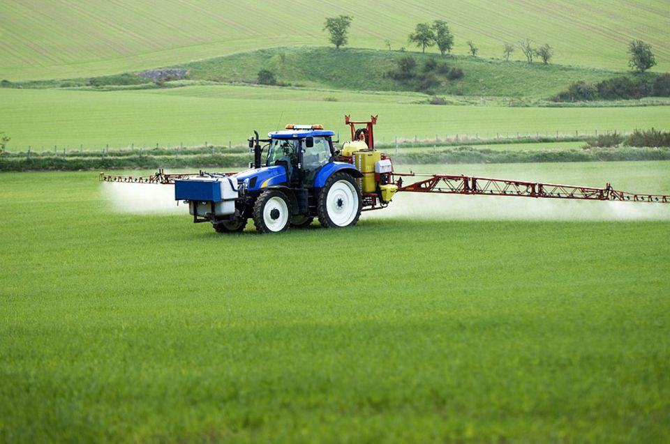 Glyphosat: Wird hier mehr vernichtet als Unkraut?