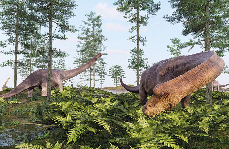 Tierlexikon: So könnte der Dreadnoughtus schrani ausgesehen haben