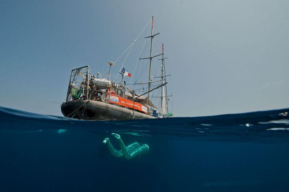 "Meeresforschung: Planktonfang auf allen Ozeanen: der Schoner ""Tara"""