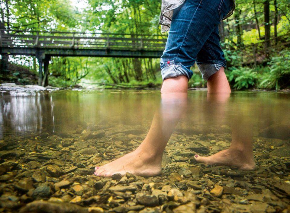 Herz: Kneippgänge im kalten Wasser trainieren die Elastizität der Adern: Das stärkt die Pumpfunktion des Herzens