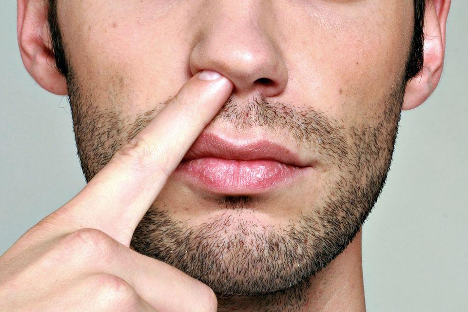 Kurioser Zeckenfund: Wie ein Forscher eine neue Zeckenart in seiner Nase fand