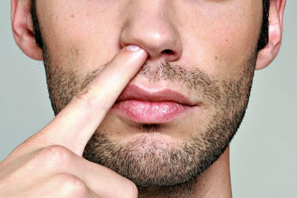 Kurioser Zeckenfund: Hierzulande ist es eher unwahrscheinlich, dass Sie eine Zecke in der Nase finden. Nasenloch-Zecken sind nur von Orten bekannt, an denen es auch Schimpansen gibt