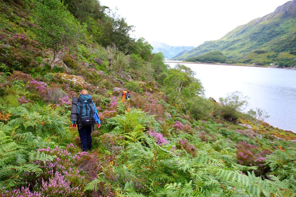 Knoydart in Schottland: Einsam, still und wunderschön. Die ersten Schritte führen immer entlang des Loch Hourn