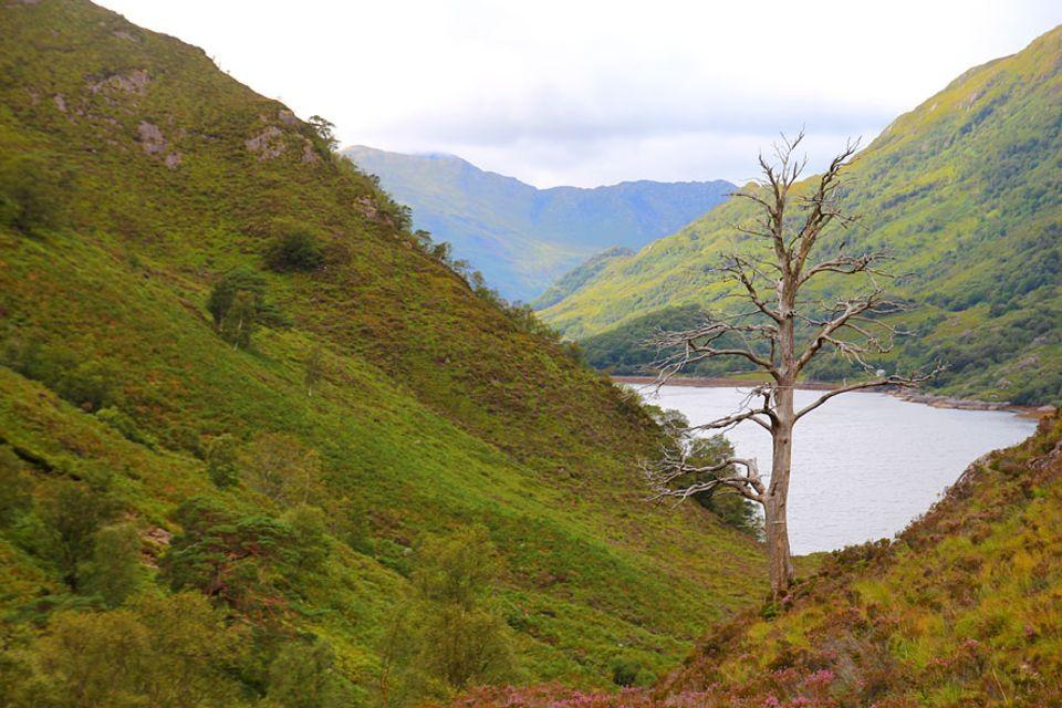 Knoydart in Schottland: Wer nicht mit dem Kompass umgehen kann, bleibt am besten gleich zuhause. Knoydart wird nicht umsonst die letzte Wildnis Schottlands genannt
