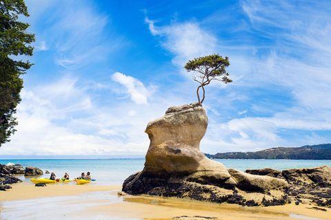 Neuseeland: Die wilde Spitze des Südens