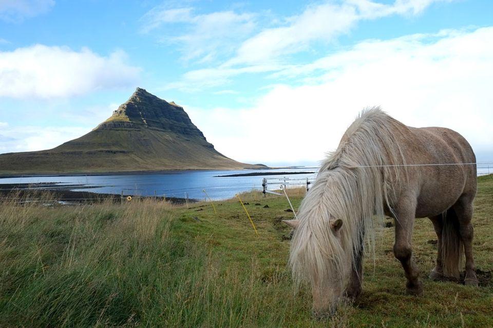 Islands Westen: Der Kirkjufell trägt seinen Namen, weil er aus der Ferne an einen Kirchenbau erinnert
