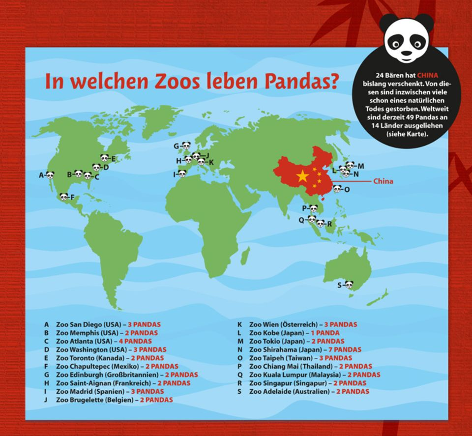 Tierlexikon: Pandabär