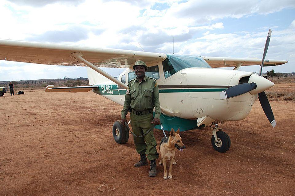 Mit Hilfe von Spürhunden ziehen in Kenia und Tansania Tierschützer in den Kampf gegen Wilderer. In den Weiten Ostafrikas ist das Kleinflugzeug das mit Abstand beste Verkehrsmittel