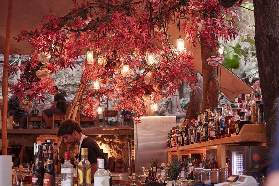 """Reisetipps: Die Hinterhofbäume sorgen in der """"Six D.O.G.S""""-Bar für das passende Ambiente. Von einem Glas Wein mit Freunden bis zu einer durchtanzten Nacht ist hier alles denkbar"""