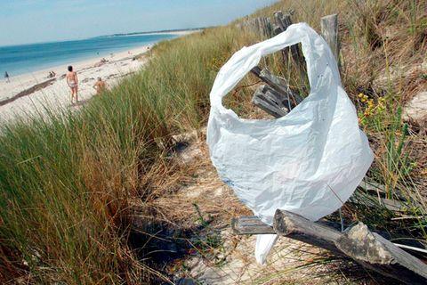 Meeresverschmutzung: Plastiktüte adé?
