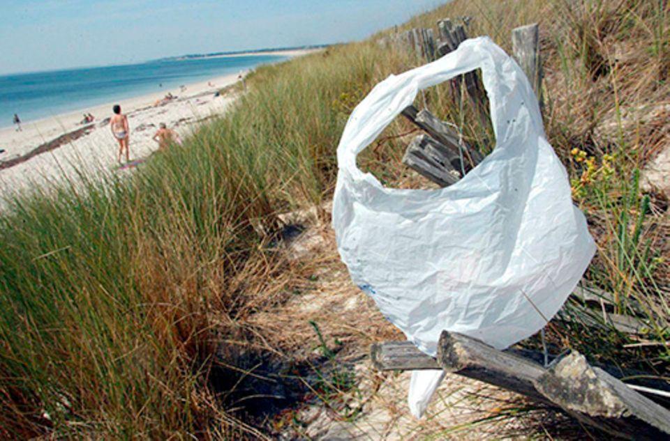 Meeresverschmutzung: Vom Winde verweht: Plastiktüten brauchen Jahrhunderte, bis sie sich im Meerwasser zersetzen