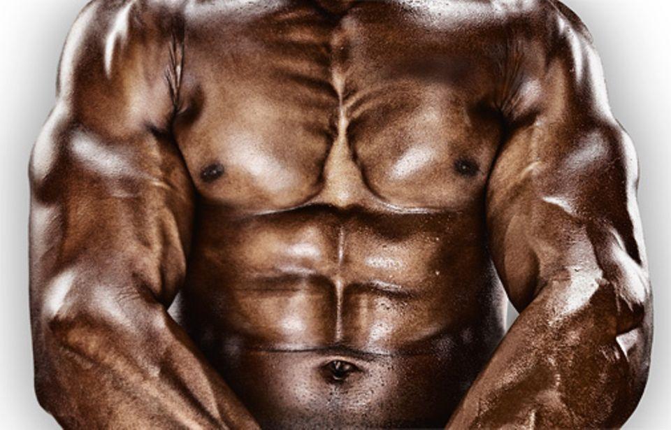 Muskeln: DIE KRAFT DER ANPASSUNG Muskeln sind hoch flexible Organe, die je nach Beanspruchung schnell an Substanz gewinnen. Nach intensivem Training ist beispielsweise ein Gewichtheber in der Lage, fast das Dreifache seines Körpergewichts zu stemmen