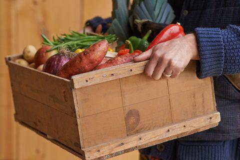 Gesunde Ernährung: Amerikas Jugend hat ungesundes Essen satt