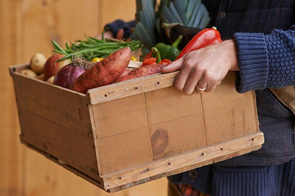 Gesunde Ernährung: Revolution auf dem Teller? Junge Amerikaner kehren Nahrungsmittelgiganten den Rücken