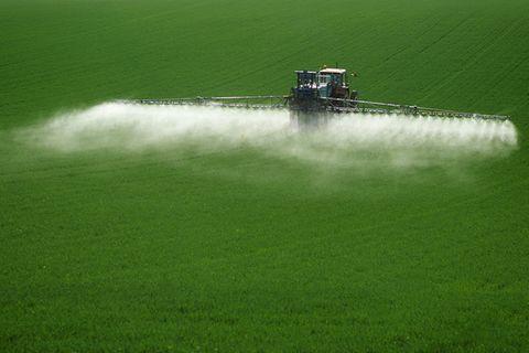 Glyphosat: Streit um das Super-Pestizid