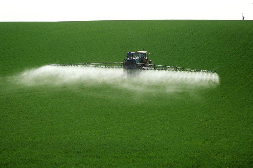 Glyphosat: Jedes Jahr landen rund 6000 Tonnen des Pflanzengifts auf deutschen Äckern - mit unbekannten Langzeitfolgen