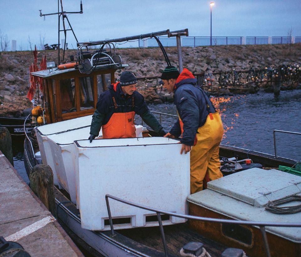 Fische: Leinen los! Die Fischer Jan Schultz und Ivo Nordt rücken vor der Abfahrt die weißen Tanks an Deck ihres Kutters zurecht. In ihnen transportiert das Team später die Heringe. Rund 200 Tiere passen in jeden Tank!