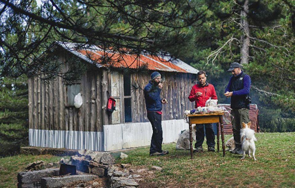 Süditalien: Ein streunender Maremmano-Schäferhund kommt rechtzeitig dazu und gesellt sich zum Picknick