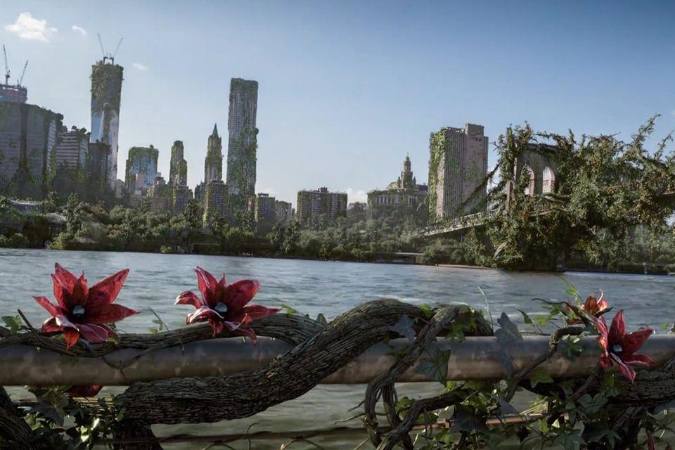 Kurzfilm Wrapped: Wenn sich die Natur die Welt zurückerobert