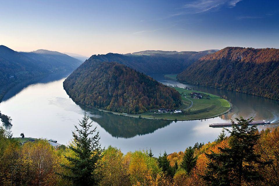 Donauradweg: An der Schlögener Schlinge wechselt die Donau zweimal die Richtung – ein Platz, um vom Rad zu steigen und sich sattzusehen