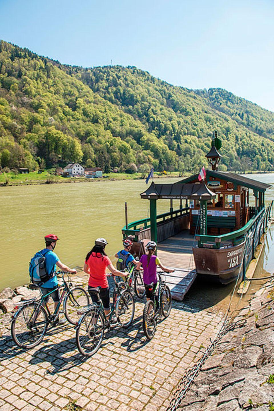 Donauradweg: Radler an der Donau lassen sich mit einer historischen Fähre übersetzen