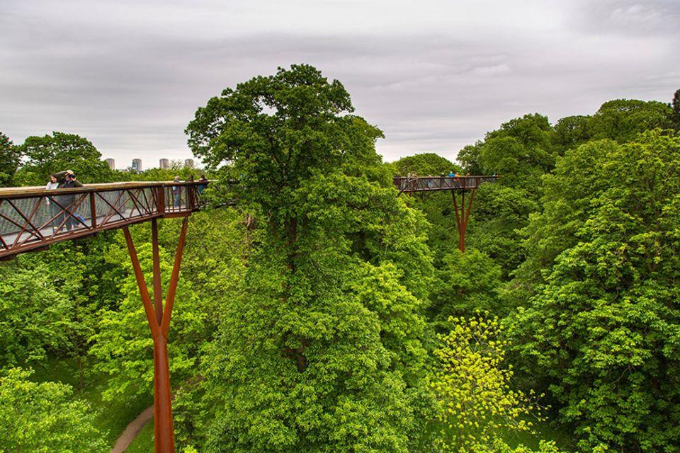 Richmond upon Thames: Überblick verschaffen sich Besucher auf dem Treetop Walk in den Kew Gardens