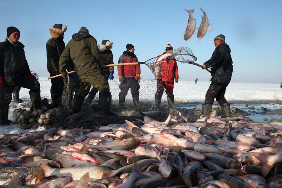 Seit über 1.000 Jahren leben Mongolen im Nordosten Chinas. Am Chagan-See sind sie Eisfischer