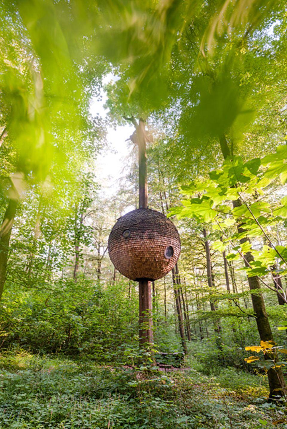 Deutschland neu entdecken: Das Baumhaus auf dem Nieheimer Kunstpfad ist eins der Bauwerke des internationalen Kunstprojekts. Alle Objekte sind ortsbezogen und sollen die Natur so wenig wie möglich verändern