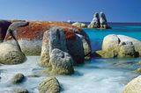 Fotogalerie: Tasmanien - Bild 3