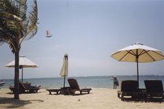 Fotogalerie: Von Bali nach New York - Bild 3