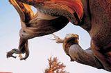 Fotogalerie: Der wilde Westen - Bild 9