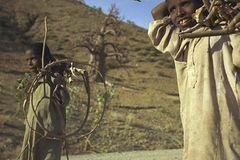Fotogalerie: Eritrea
