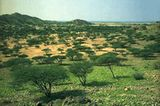 Fotogalerie: Eritrea - Bild 7