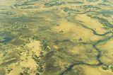 Botswana: Die Schule der Elefanten - Bild 4