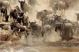 Fotogalerie: Der Zauber von Afrika - Bild 5