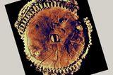 Der Mechanismus von Antikythera - Bild 8