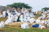 Eritrea: Esel für die Ärmsten - Bild 3