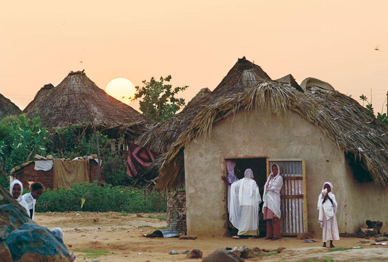 Eritrea: Esel für die Ärmsten - Bild 5