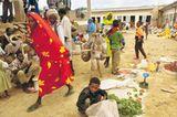 Eritrea: Esel für die Ärmsten - Bild 6