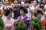 Fotogalerie zum Cover-Wettbewerb: Japan - Bild 5