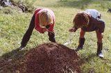 Fotogalerie: Südtirol mit Kindern - Bild 6