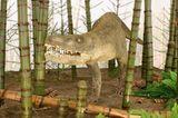 Dinosaurier - Erfolgsmodelle der Evolution