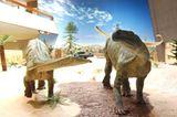 Dinosaurier - Erfolgsmodelle der Evolution - Bild 8