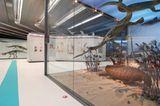 Dinosaurier - Erfolgsmodelle der Evolution - Bild 12