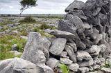 Fotogalerie zum Cover-Wettbewerb: Irland - Bild 5
